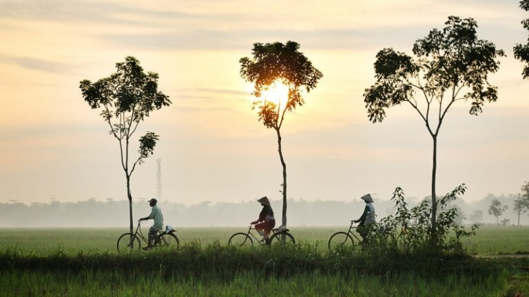 asia sunset bicycle